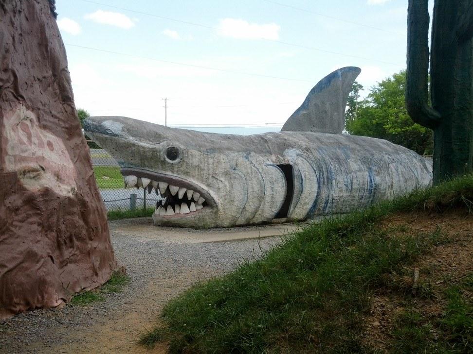 Shark at Dinosaur Land